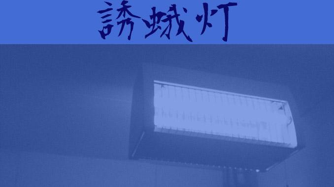 短編小説『誘蛾灯』